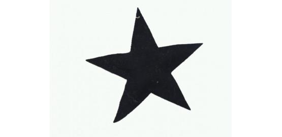 Lot de deux étoiles à suspendre noires