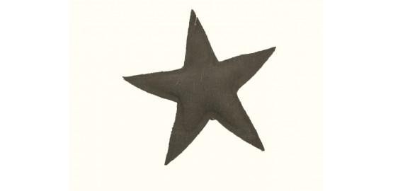 Lot de deux étoiles à suspendre vertes